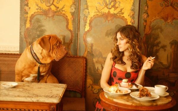 Чем не стоит кормить собаку? не давайте собаке курить
