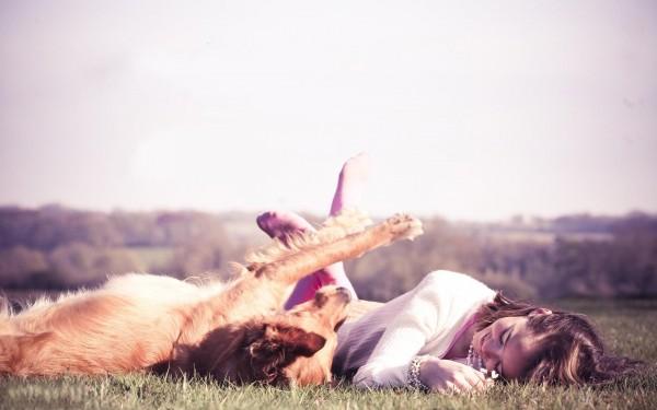 Пес валяется на траве