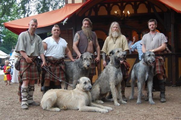 Ирландский волкодав и крутые мужики