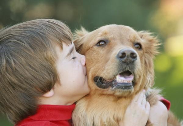 мальчик целует собаку