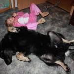 Бурят-монгольский волкодав и ребенок